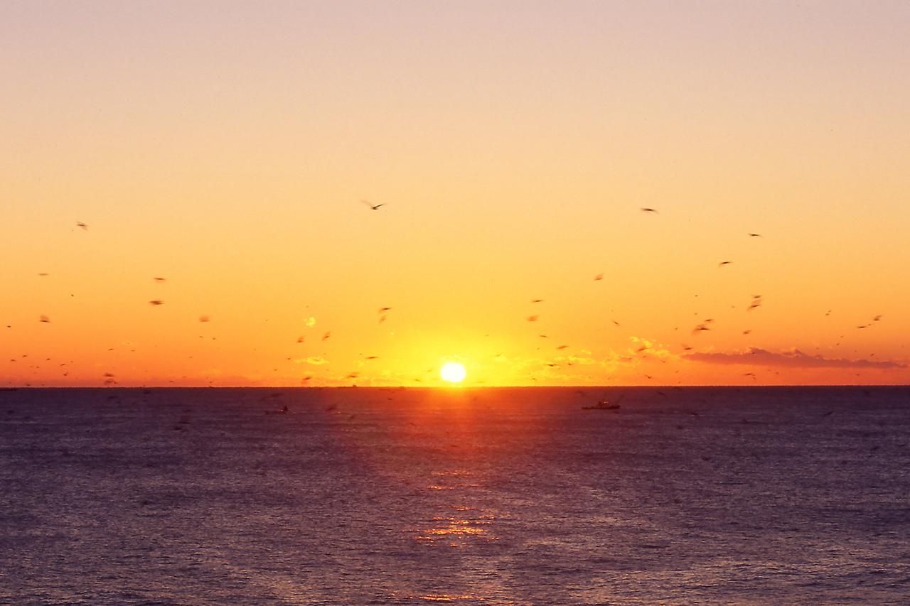 จุดชมพระอาทิตย์ขึ้น ใน ญี่ปุ่น : Inubosaki Lighthouse