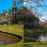 flowerpark2