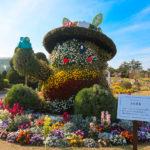 flowerpark6