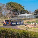 flowerpark7