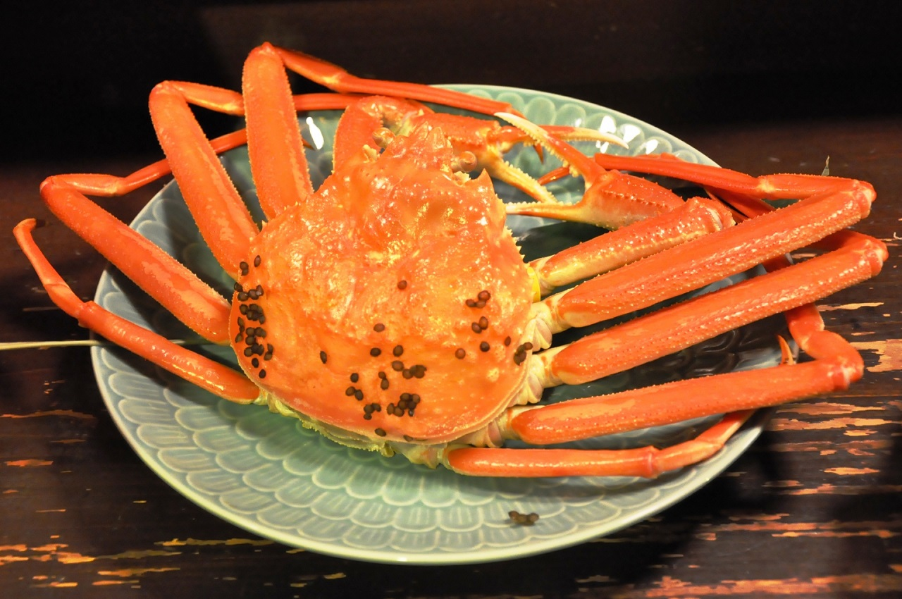 อาหาร จ.ฟุกุอิ (Fukui) - Echizengani