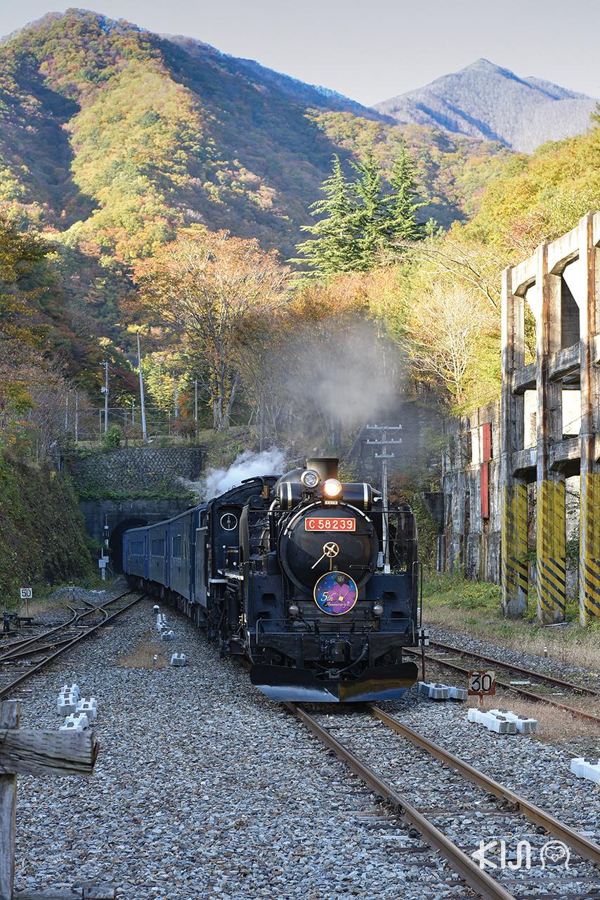นั่งรถไฟ SL Ginga เที่ยวอิวาเตะ (Iwate)