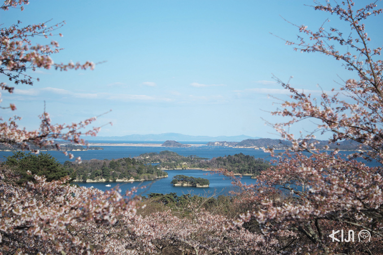 เที่ยว จ.มิยากิ (Miyagi) - มัตสึชิมะ (Matsushima)