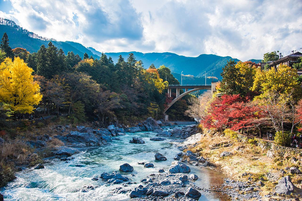 ภูเขา ญี่ปุ่น ในช่วงฤดูใบไม้เปลี่ยนสี - ภูเขามิตาเกะ (Mt. Mitake) จ.โตเกียว