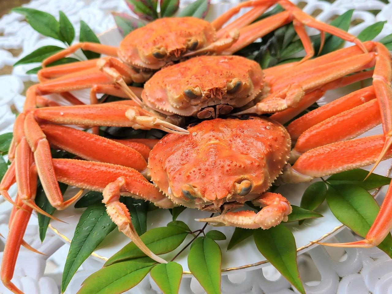 อาหารท้องถิ่น จ.อิชิกาวะ (Ishikawa) - โคบาโกะกานิ (Kobako-gani)