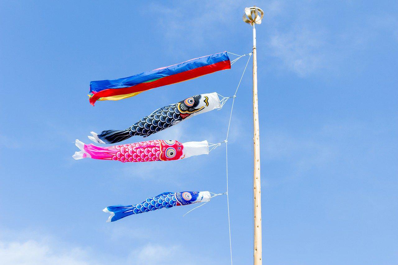ประดับธงปลาคาร์ปใน วันเด็กผู้ชาย