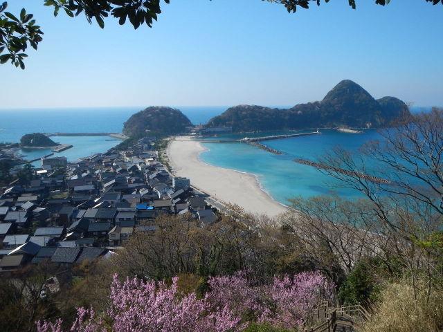ทาเคโนะ ชายหาด ซากุระ
