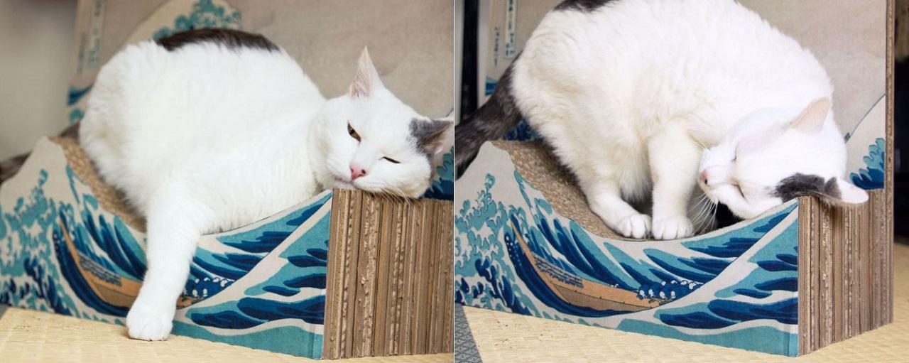 Cat Scratcher นี้นอกจากใช้ฝนเล็บแมวก็สามารถใช้นอนเล่นได้ด้วย!
