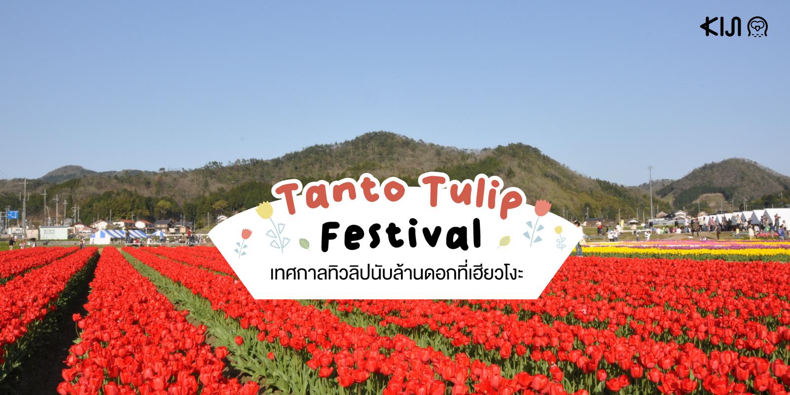 Tanto Tulip Festival : เทศกาลทิวลิปนับล้านดอก ณ เมืองทันโต จังหวัดเฮียวโงะ