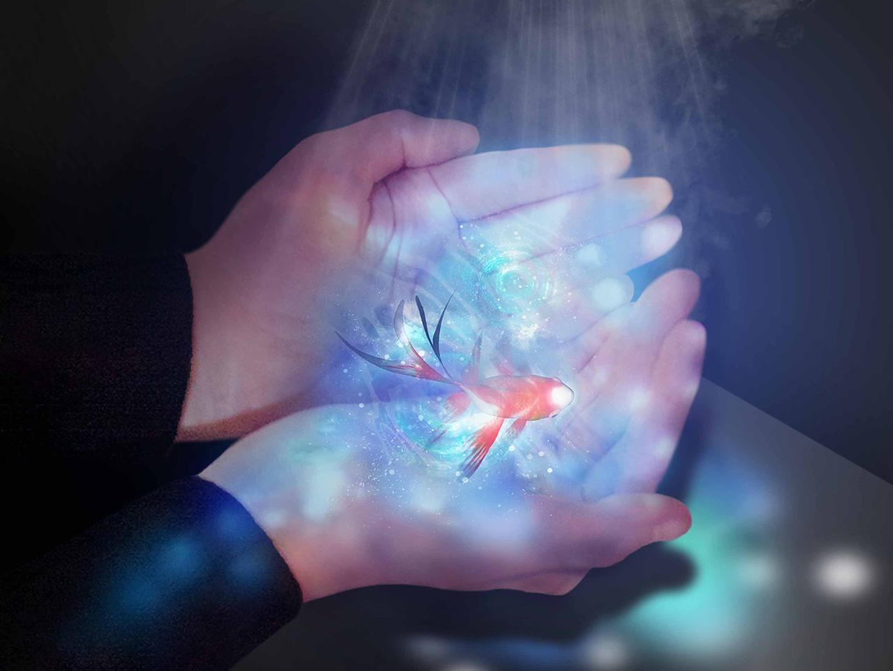 NAKED HANABI AQUARIUM : NAKED Tsukubai™ เมื่อยื่นมือออกไปรับสเปรย์แอลกอฮอล์ บนฝ่ามือจะปรากฏงานศิลปะรูปแบบต่างๆ ขึ้นพร้อมละอองสเปรย์แอลกอฮอล์ที่พ่นออกมา
