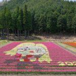 tulip2021