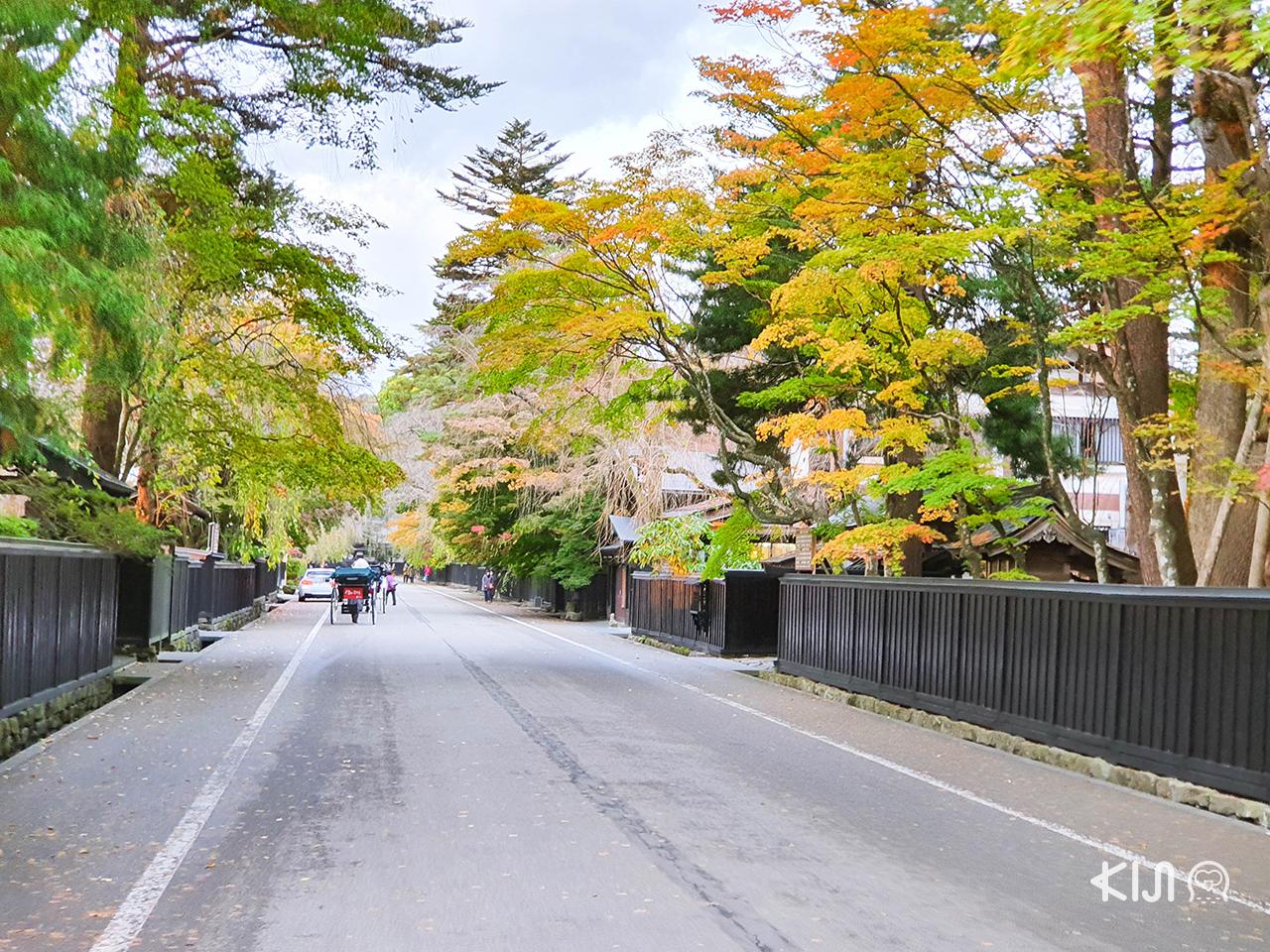 Kakunodate Bukeyashiki Street ฤดูใบไม้ร่วง ใบไม้เปลี่ยนสี อาคิตะ