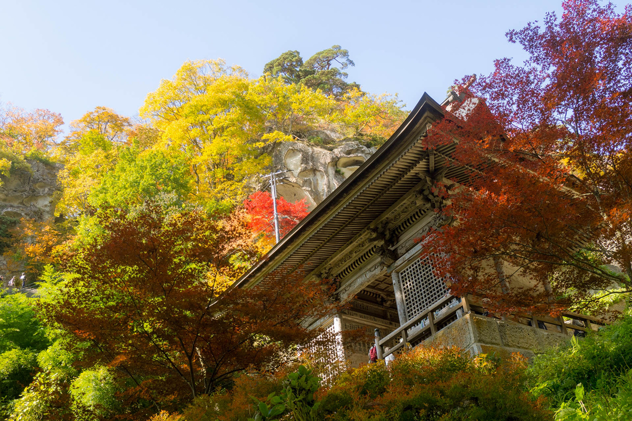 ใบไม้เปลี่ยนสี ยามากาตะ ยามาเดระ