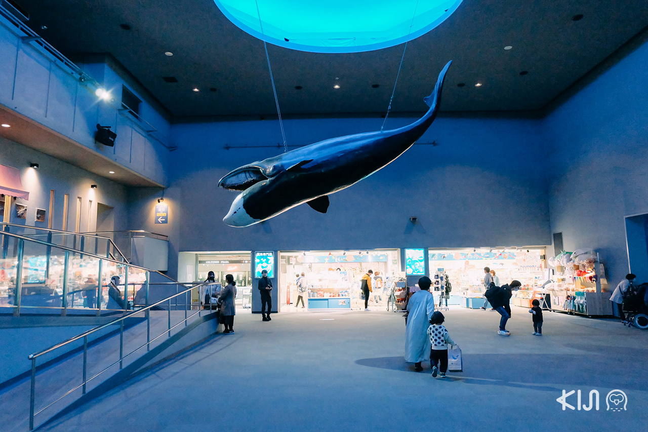 ร้านจำหน่ายของที่ระลึกภายในพิพิธภัณฑ์ Toba Aquarium