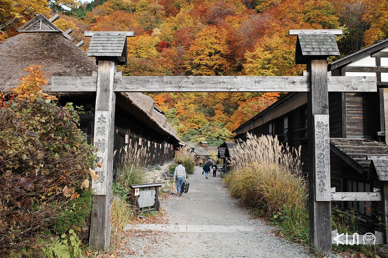 Tsurunoyu Onsen อาคิตะ ใบไม้เปลี่ยนสี